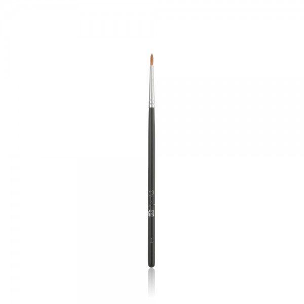 Professional Brush 1